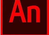 Adobe Animate CC Crack 2019 With Full Key Download {Win/Mac}